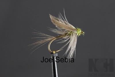Joe Sebia