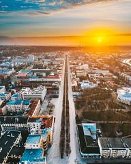 Laisvės alėja | Liberty Avenue | Kaunas aerial #53/365