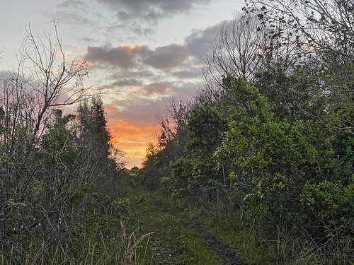 Bar Ditch road sunrise 04-20200223