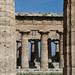 Paestum, foto: Petr Nejedlý