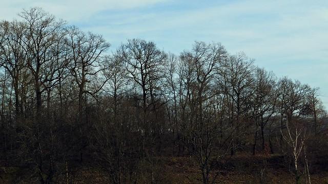 18 - Blanzy (Bourgogne du Sud) - Barrage de la Sorme - Sous le soleil d'hiver