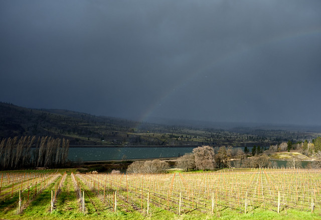 Storm Coming Near Mosier, with a Rainbow