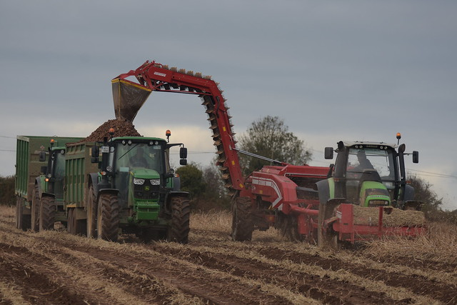 Deutz Fahr Agrotron M625 Tractor with a Grimme GT170 Twin Row Potato Harvester & Stalk Chopper filling potatoes to a Thorpe Trailer drawn by a John Deere 6155M Tractor