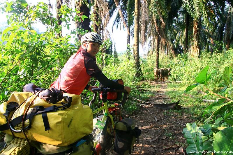 Malaysia Tour_059