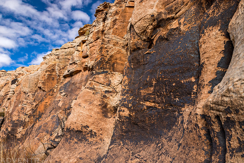 Canyon Wall Petroglyphs