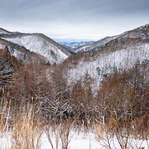nikon d850 landscape snow trees mountains hills winter