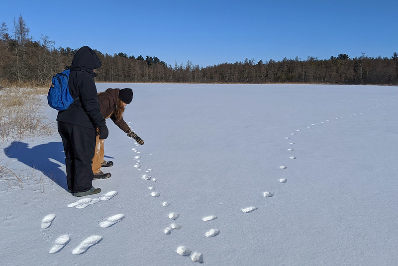 A person pointing at a set of tracks in the snow, while another person looks on.
