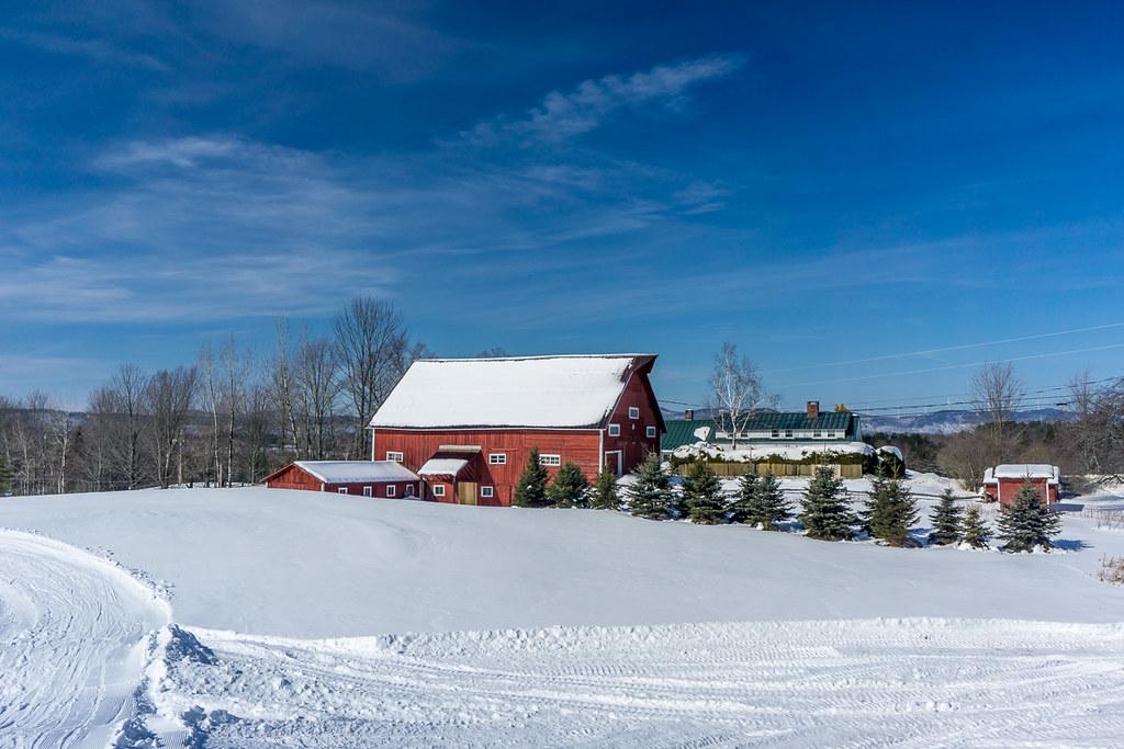 Murphy's Farm
