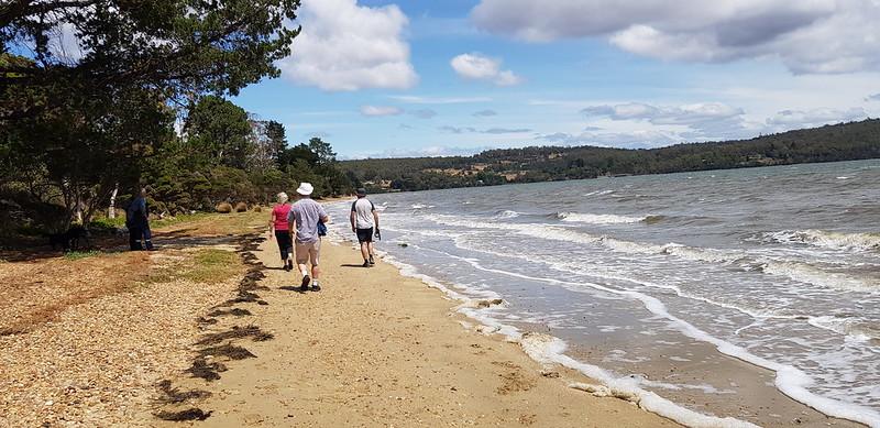Tamar River walk