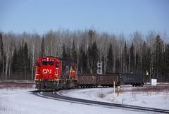 CN1006