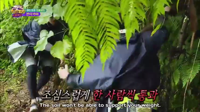 Law of the Jungle: 7×402