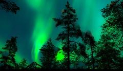 Pod arktickým nebem
