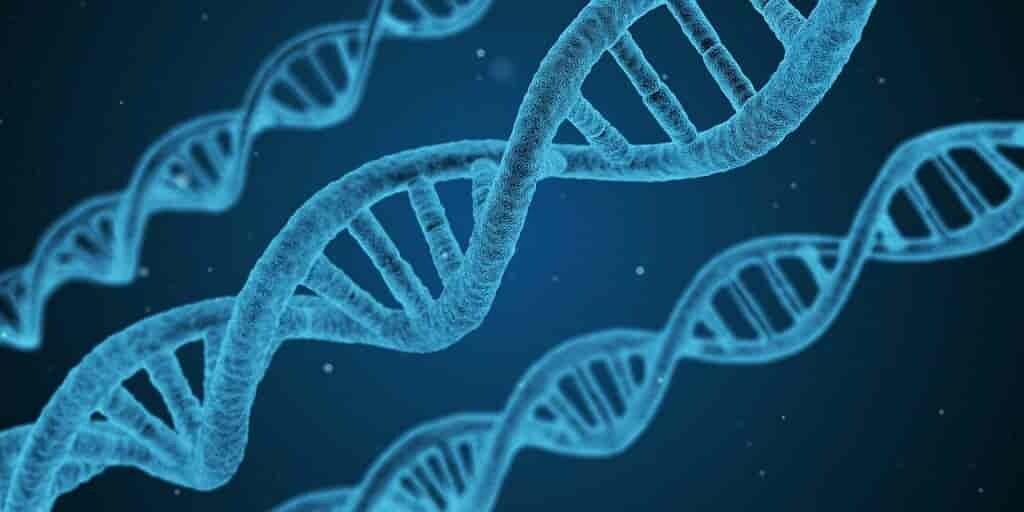 Nos gènes jouent un rôle déterminant d'avoir le VIH