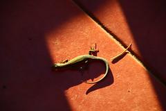 eitb.eus posted a photo:Día soleado
