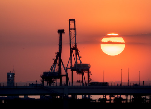 横浜 横浜港 morning morningsun 朝日 sunrise 本牧埠頭 yokohamaport yokohama