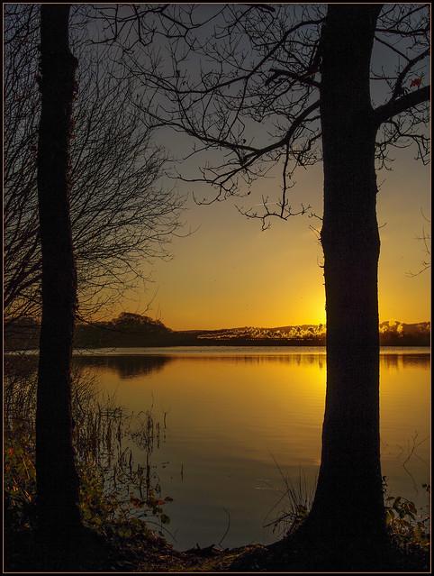 Swithland Sunset. 26/12/2008.