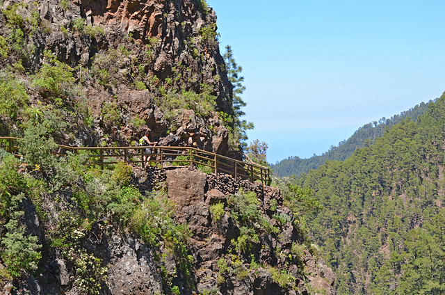 Walking in the Orotava Valley, Tenerife