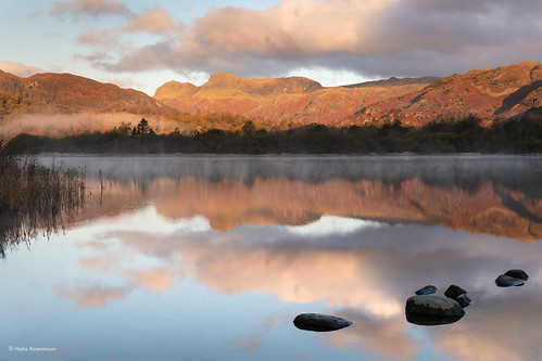 mist lake cold sunrise frost lakedistrict elterwater riverbrathay lakeland water cumbria england uk colours reflections spiegelungen rocks langdalepikes