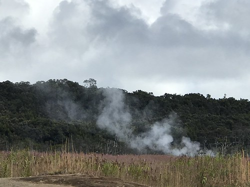 Steam rising from the ground. From History Comes Alive at Hawai'i Volcanoes National Park