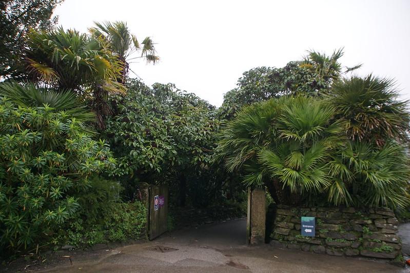 Trebah Gardens - All Photos