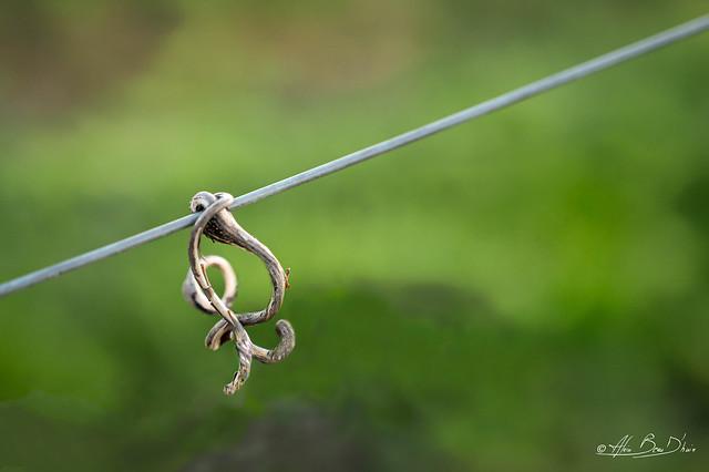 Hook on, man ....!
