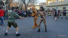 desfile-penas-carnaval-tomelloso (164)