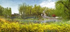 Soul2Soul Spring River