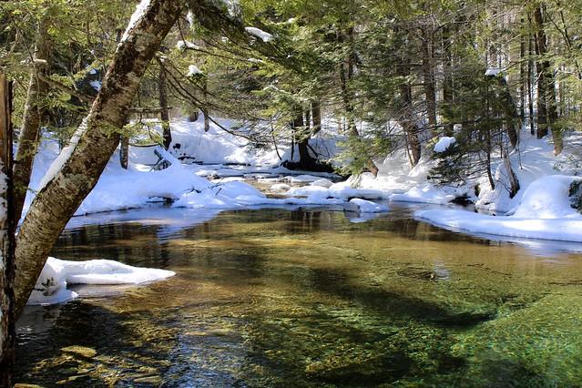 Winter at the Basin