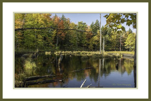 A natural sanctuary in Michigan's Upper Peninsula