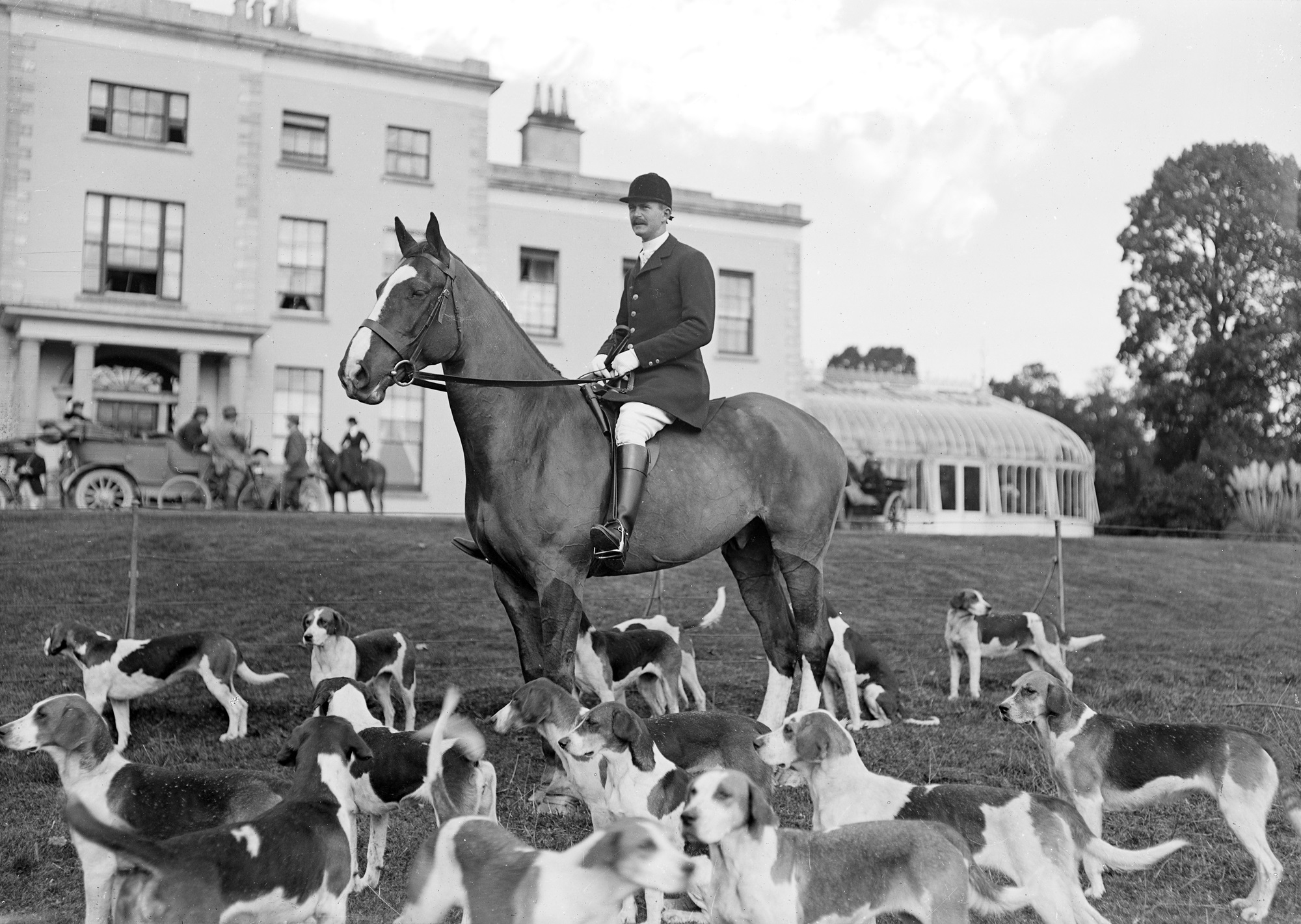 DOGS with Mr. J.P. Longfield M.F.H., Duhallow, Waterloo, Mallow on horse