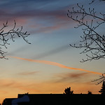 24. Veebruar 2020 - 18:05 - A con trail running across a pastel sunset - Edmonton, Alberta