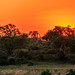 Sunset over KNP