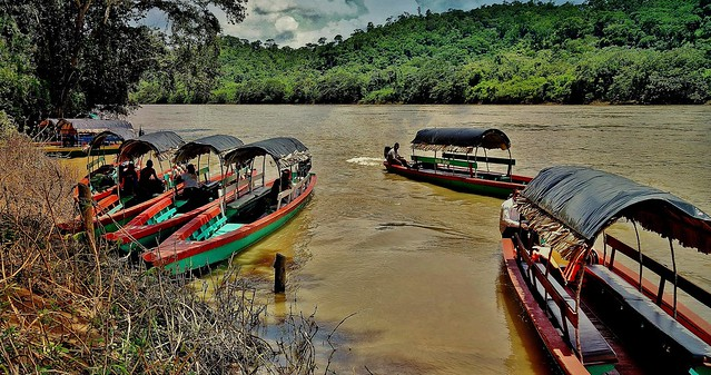 MEXICO, Mayastätte Yaxchilán am Usumacinta.Fluss, 19553/12407