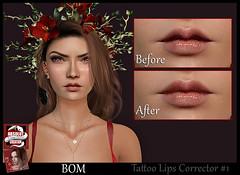 Lips corrector-1