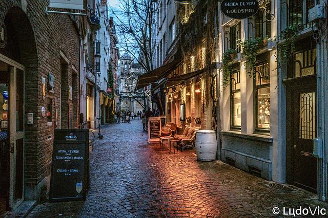 Anvers/Antwerpen 2020 (03)