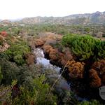 Sierra Morena Landscape