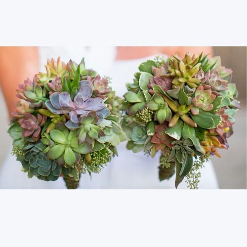 succulent_bouquets