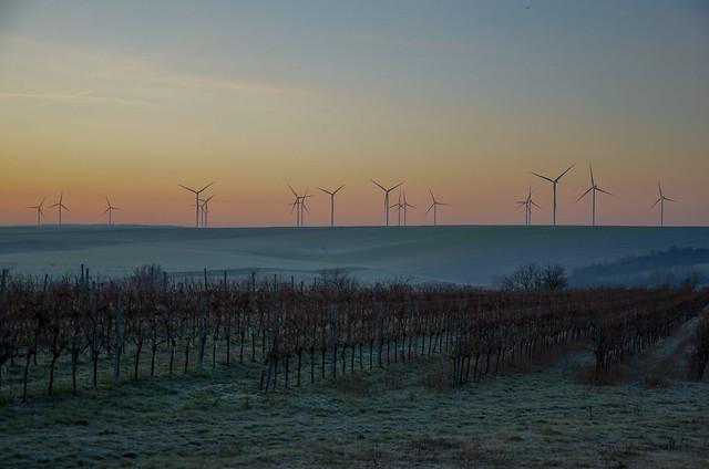 Sonnenaufgang mit Windrädern bei Niedersulz im Weinviertel