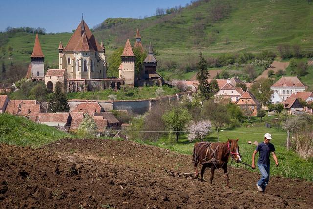 Biertan; im Hintergrund die Klosterburg.