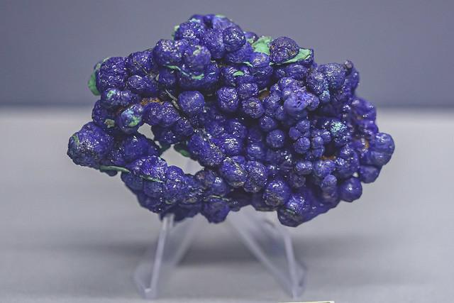 Botryoidal Azurite, Bisbee