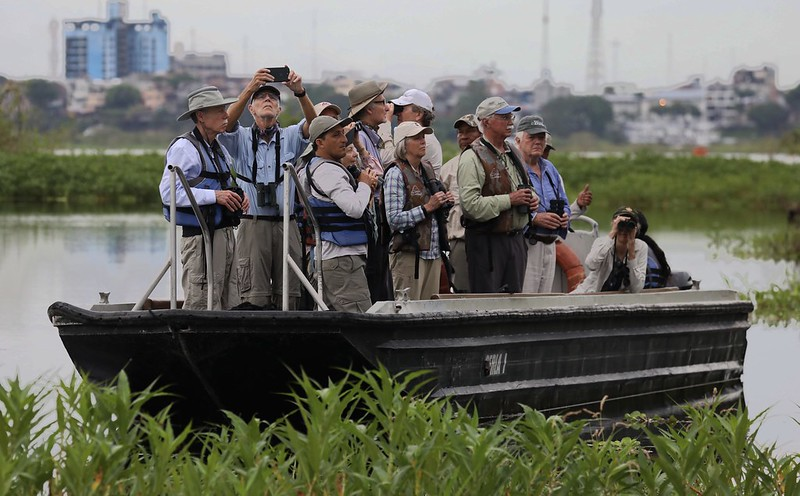 Birding from the skiff_Ascanio_Cornell Amazon Cruise_DZ3A6619