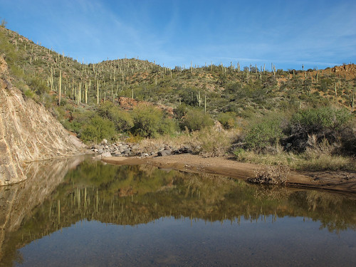 arizona desert pool reflection cavecreek pond sonorandesert riparian creek winter outdoors desertreflections exploration hiking spurcrossranchconservationarea tontonationalforest maricopacounty southwest nature canonpowershotg12 pspx2020 zoniedude1 earthnaturelife