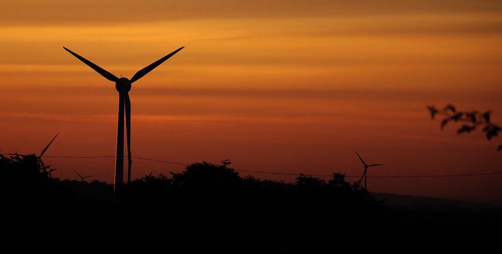 Wind Farm Dawn