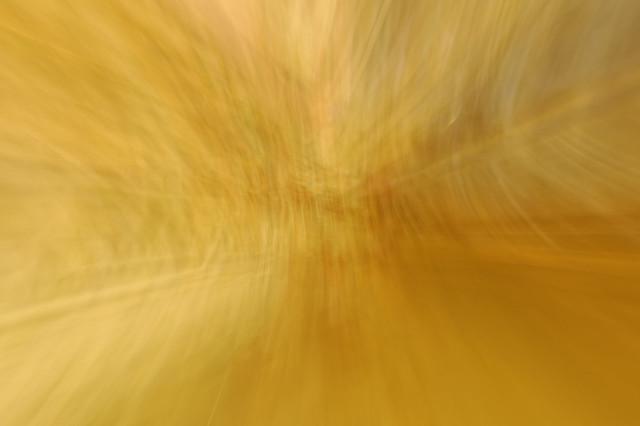 Abstrait L1