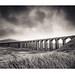 Ribblehead Viaduct