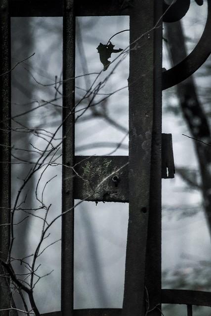 Lieu abandonné... ou pas... . . . #vestiges #demeure #maison #balançoire #portail #lustre #urbex 
