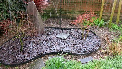 Hail on the rock garden