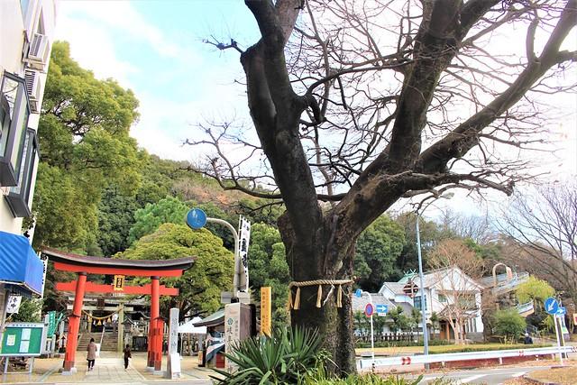 kashimori-gosyuin006
