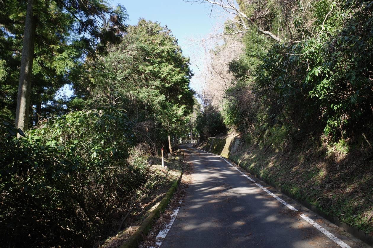 松田山~高松山 林道歩き
