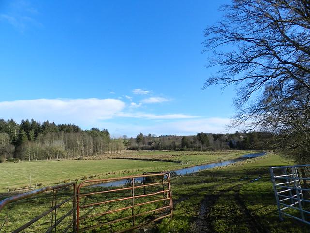 Long Shadows, River Ythan, Methlick, Aberdeenshire, Feb 2020